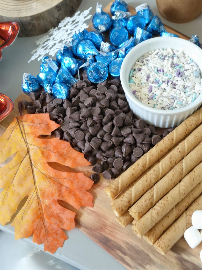 Hot Chocolate Mix-ins from a Frozen Themed Hot Chocolate & Dessert Bar on Kara's Party Ideas | KarasPartyIdeas.com (20)