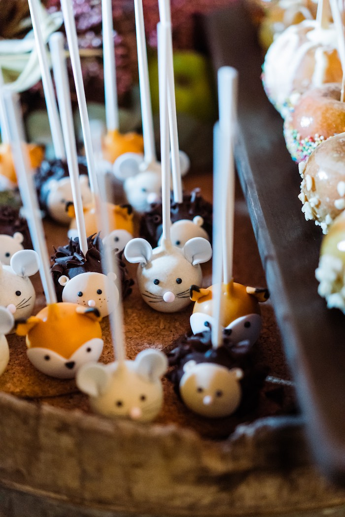 Woodland Creature Cake Pops from a My Little Pumpkin's 1st Birthday Party on Kara's Party Ideas | KarasPartyIdeas.com (23)