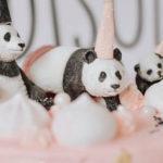 Pink Panda Birthday Party on Kara's Party Ideas | KarasPartyIdeas.com (2)