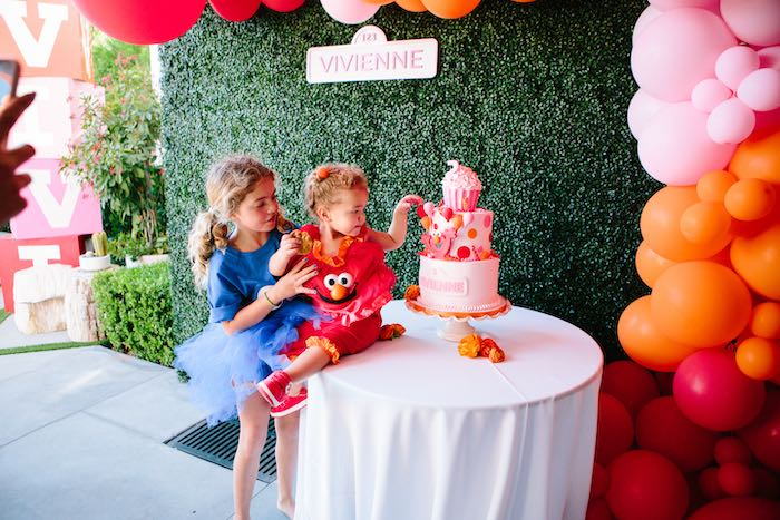 Girly Elmo Birthday Party on Kara's Party Ideas   KarasPartyIdeas.com (16)