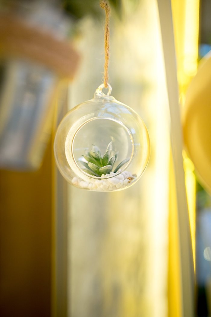 Bulb Succulent from a Cactus & Succulent Birthday Party on Kara's Party Ideas | KarasPartyIdeas.com (14)