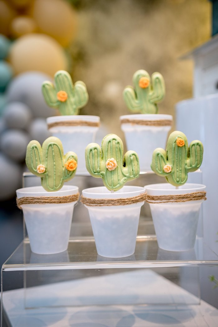 Planted Cactus Cookies from a Cactus & Succulent Birthday Party on Kara's Party Ideas | KarasPartyIdeas.com (10)