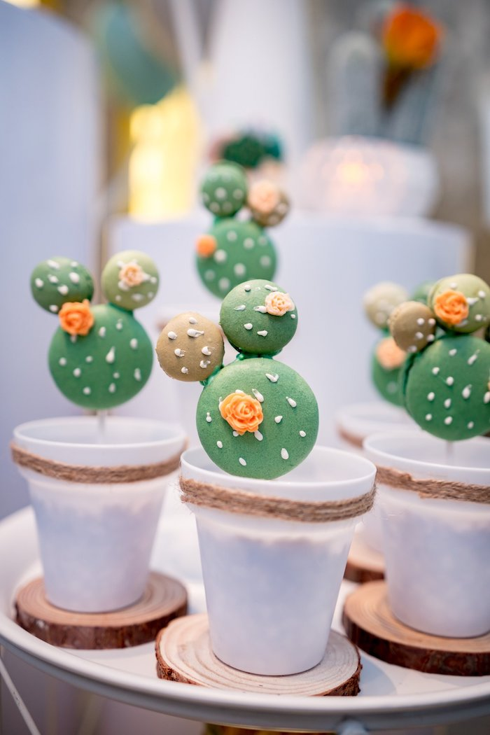 Planted Cactus Macaron Pops from a Cactus & Succulent Birthday Party on Kara's Party Ideas | KarasPartyIdeas.com (9)