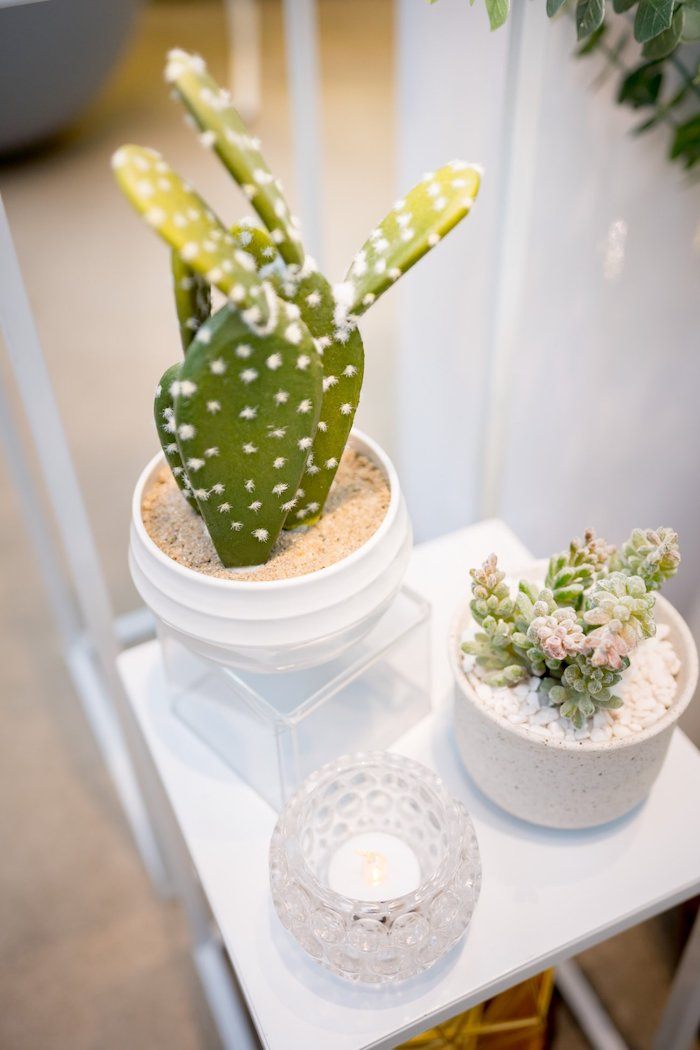 Cacti from a Cactus & Succulent Birthday Party on Kara's Party Ideas | KarasPartyIdeas.com (25)