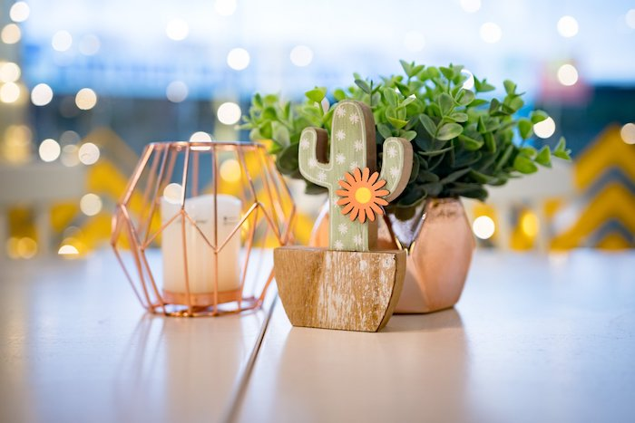 Cactus & Succulent Table Centerpiece from a Cactus & Succulent Birthday Party on Kara's Party Ideas | KarasPartyIdeas.com (6)
