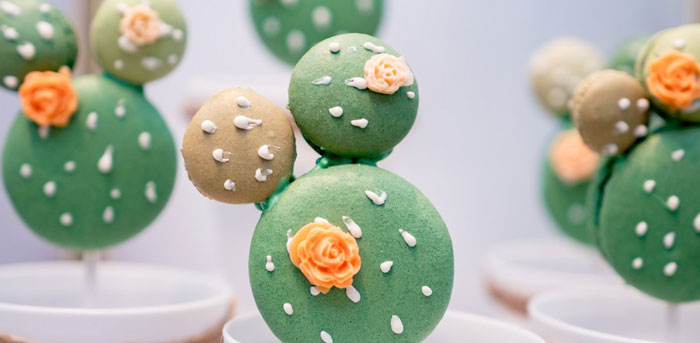 Cactus & Succulent Birthday Party on Kara's Party Ideas | KarasPartyIdeas.com (4)