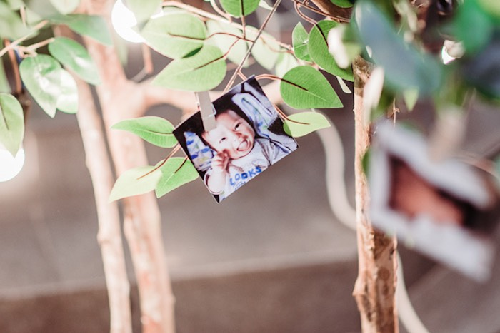 Photo in a Tree from a Camping Outdoor Adventure Birthday Party on Kara's Party Ideas | KarasPartyIdeas.com (10)