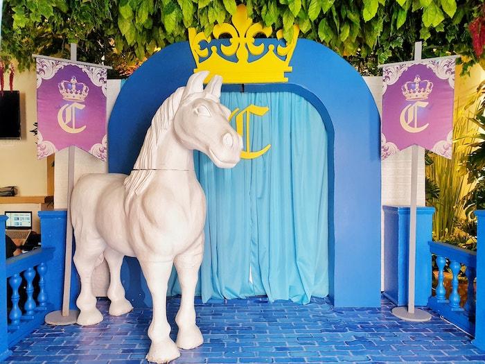 Royal Prince Birthday Party on Kara's Party Ideas | KarasPartyIdeas.com (19)