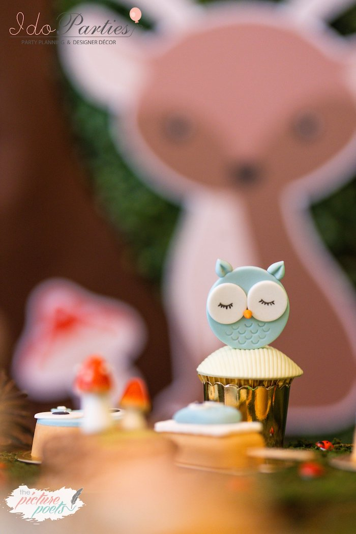 Owl Cupcake from a Woodland Animal Birthday Party on Kara's Party Ideas | KarasPartyIdeas.com (24)