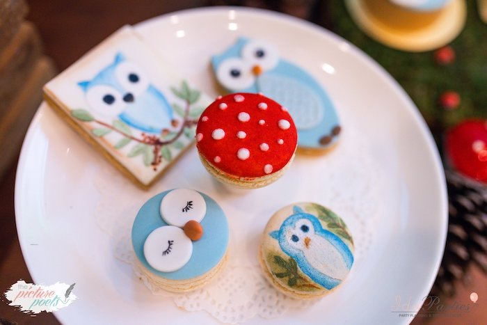 Owl-inspired Sweets + Desserts from a Woodland Animal Birthday Party on Kara's Party Ideas | KarasPartyIdeas.com (32)