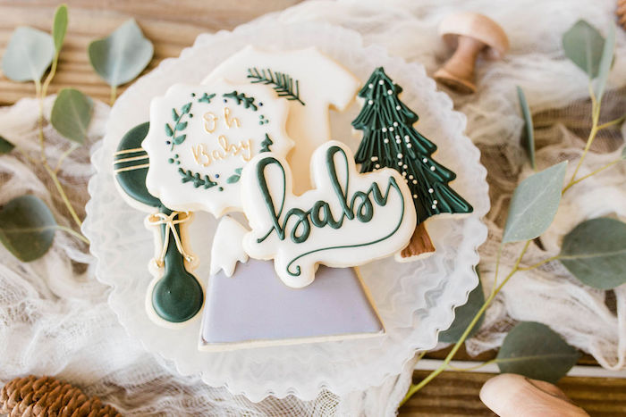Mountain/Baby Themed Cookies from a Mountain Camping Outdoor Baby Shower on Kara's Party Ideas | KarasPartyIdeas.com (32)