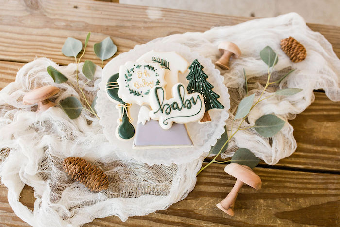 Mountain/Baby Themed Cookies from a Mountain Camping Outdoor Baby Shower on Kara's Party Ideas | KarasPartyIdeas.com (31)