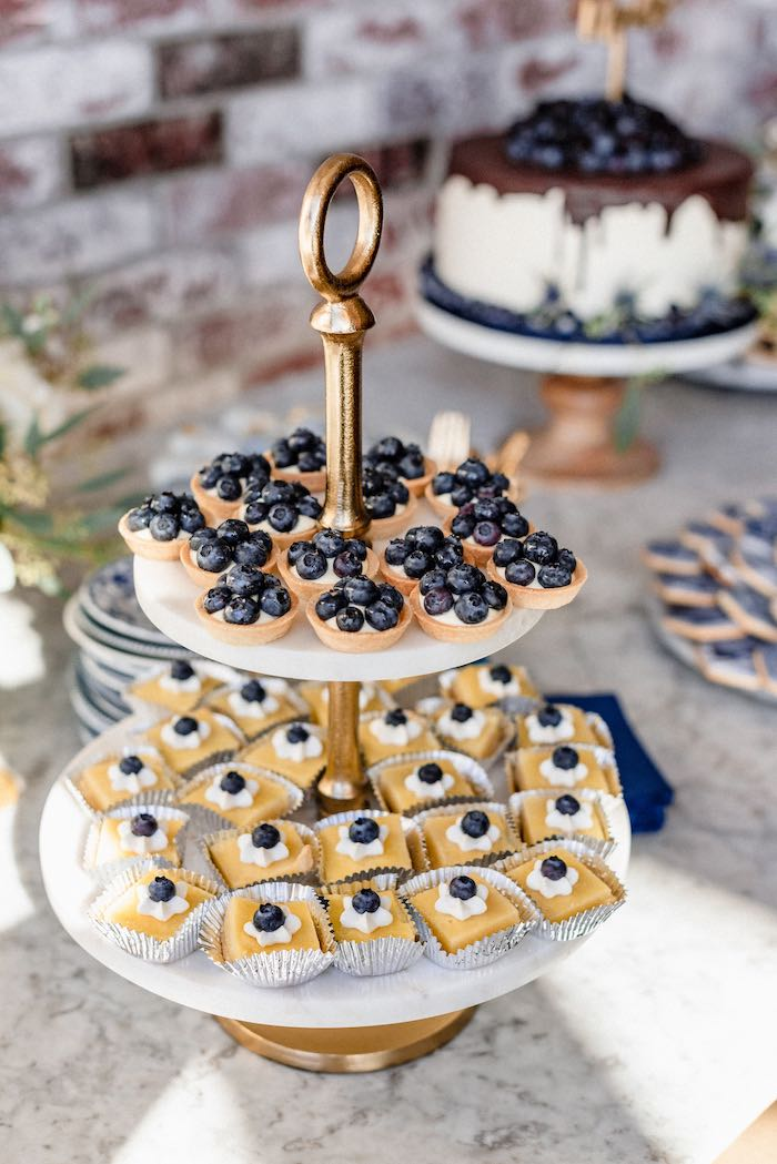 Blueberry-topped Desserts from a Rustic Vintage Blueberry Baby Shower on Kara's Party Ideas | KarasPartyIdeas.com (26)
