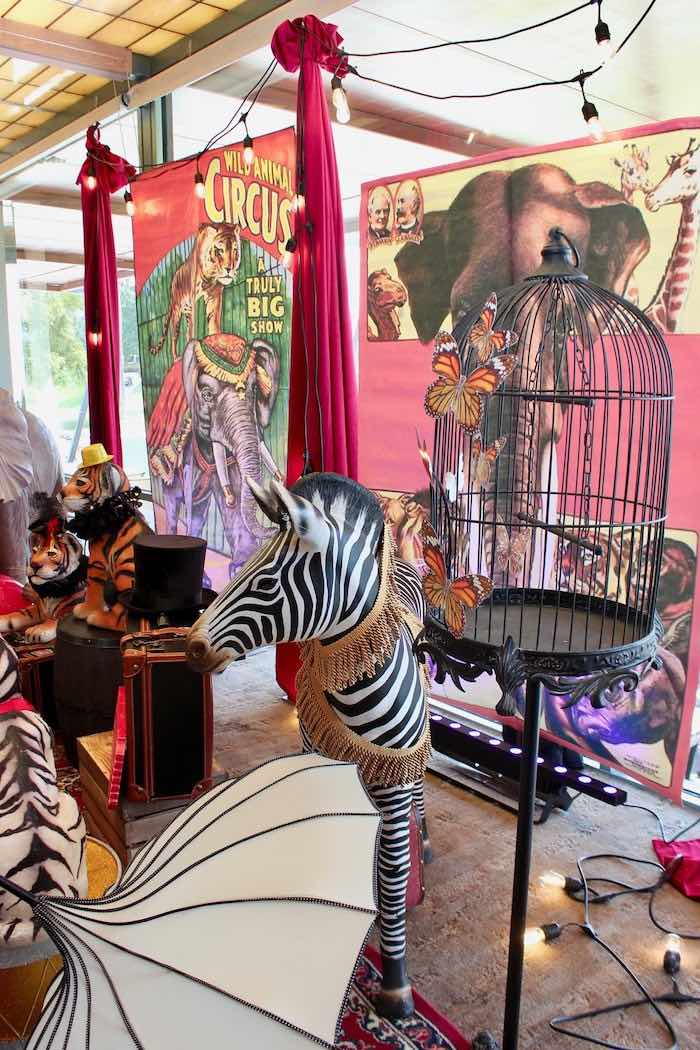 Zebra Prop from a Vintage Circus Baby Shower on Kara's Party Ideas | KarasPartyIdeas.com (12)