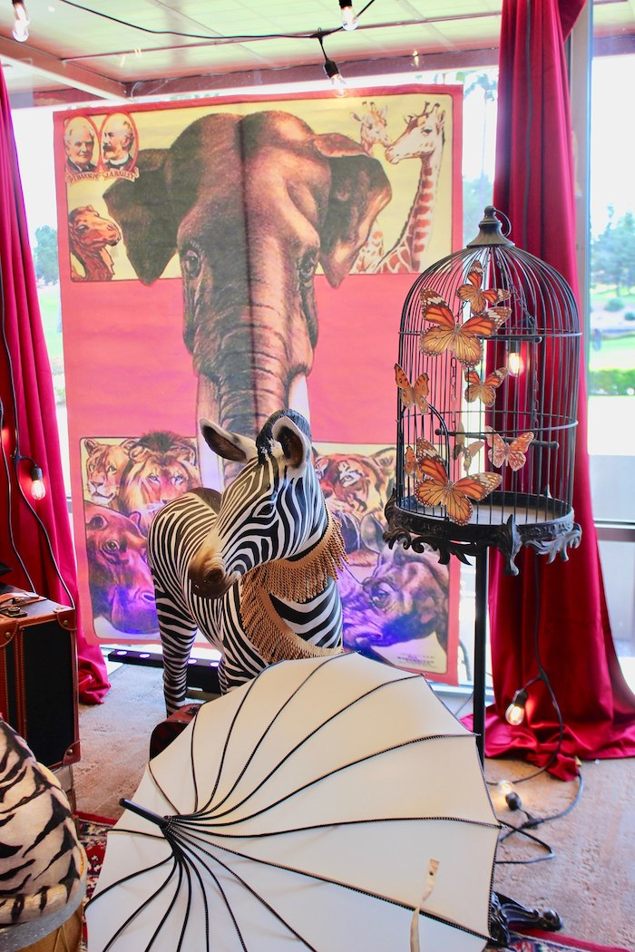 Zebra Prop from a Vintage Circus Baby Shower on Kara's Party Ideas | KarasPartyIdeas.com (6)