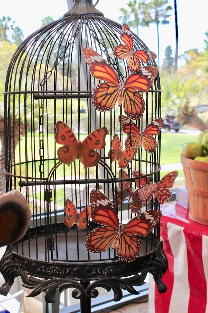 Butterfly Cage from a Vintage Circus Baby Shower on Kara's Party Ideas | KarasPartyIdeas.com (5)