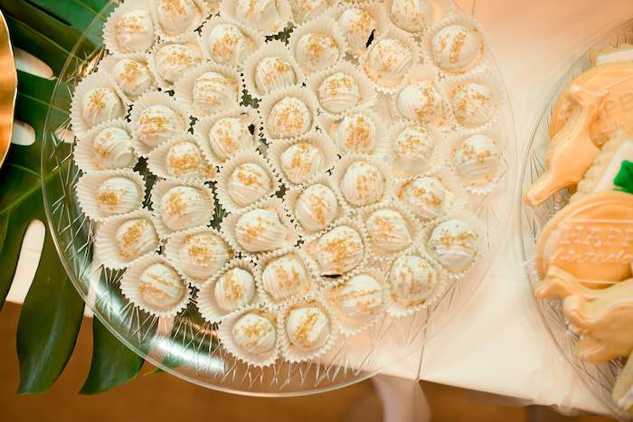 Cake Balls from a Wild ONE Golden First Birthday Party on Kara's Party Ideas | KarasPartyIdeas.com (26)