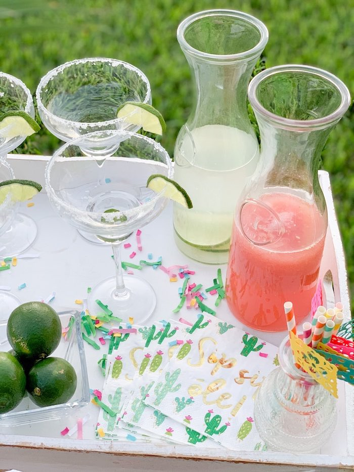 Cactus Cocktail Napkins + Margarita glasses from a