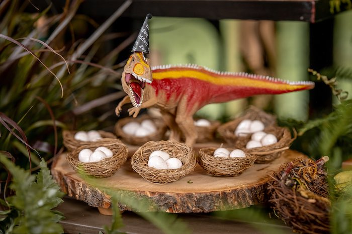 Dinosaur Candy Egg Nests from a Dino-mite Birthday Party on Kara's Party Ideas | KarasPartyIdeas.com (20)