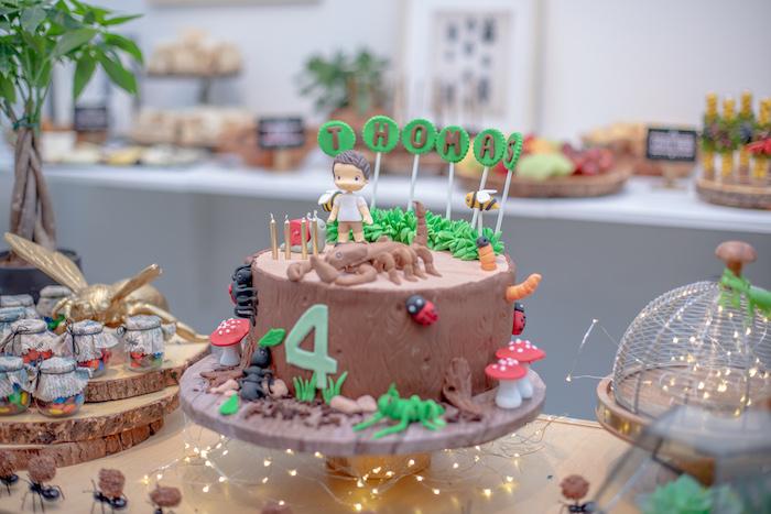 Bug Themed Birthday Cake from an Insect & Bug Birthday Bash on Kara's Party Ideas | KarasPartyIdeas.com (8)