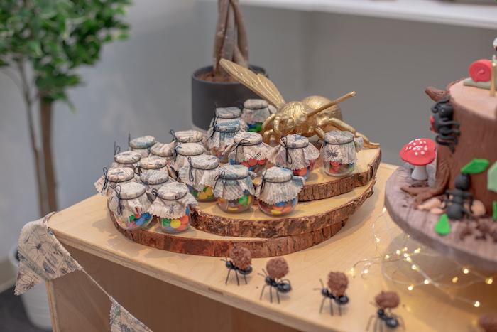 Bug Themed Candy Favor Jars from an Insect & Bug Birthday Bash on Kara's Party Ideas | KarasPartyIdeas.com (9)