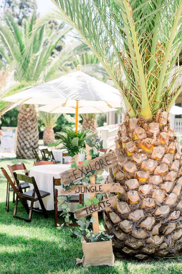 Rustic Wooden Directional Sign from a Tropical Safari Birthday Party on Kara's Party Ideas | KarasPartyIdeas.com (13)