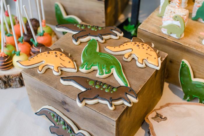 Dinosaur Themed Cookies from a Colorful Dinosaur Birthday Party on Kara's Party Ideas | KarasPartyIdeas.com (32)