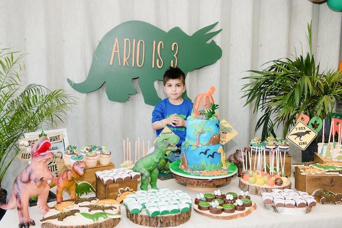 Colorful Dinosaur Birthday Party on Kara's Party Ideas | KarasPartyIdeas.com (6)
