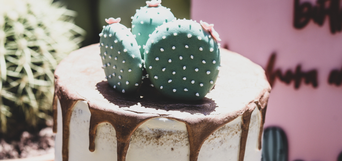 Terra Cotta Cactus Picnic Party on Kara's Party Ideas | KarasPartyIdeas.com (1)