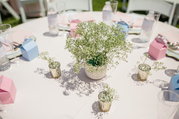 "Babies Breath Blooms from a ""He or She? What Will the Baby Be?"" Gender Reveal on Kara's Party Ideas 