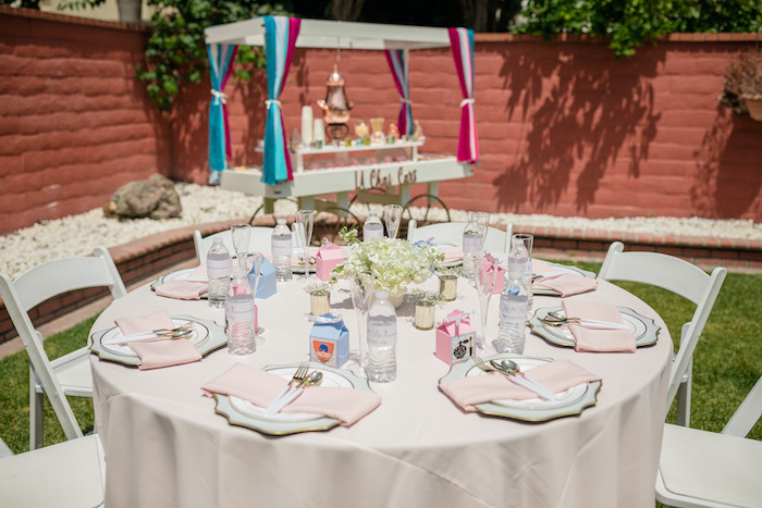 "Guest Table from a ""He or She? What Will the Baby Be?"" Gender Reveal on Kara's Party Ideas 