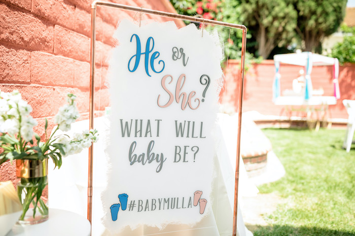 "Acrylic ""He or She"" Party Entrance Sign from a ""He or She? What Will the Baby Be?"" Gender Reveal on Kara's Party Ideas 