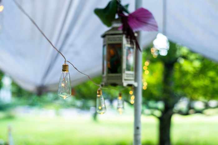 Edison Bulb Light Strand from a Boho Woodland 30th Birthday Fête on Kara's Party Ideas | KarasPartyIdeas.com (28)
