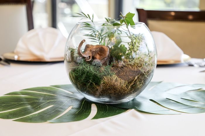 Jungle Terrarium Centerpiece from a Jungle Safari Birthday Party on Kara's Party Ideas | KarasPartyIdeas.com (42)