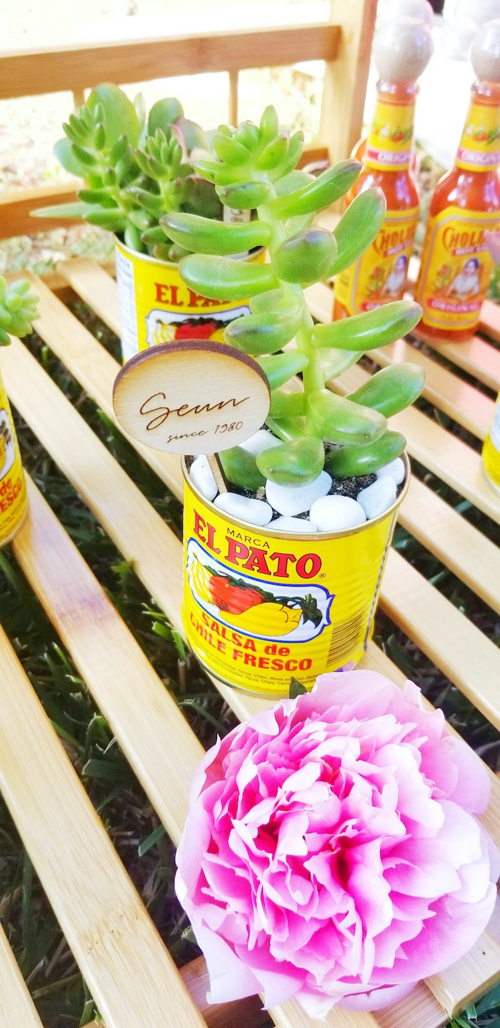Succulent Favors from a Mexican Cantina Drive-By Birthday Party on Kara's Party Ideas | KarasPartyIdeas.com (24)