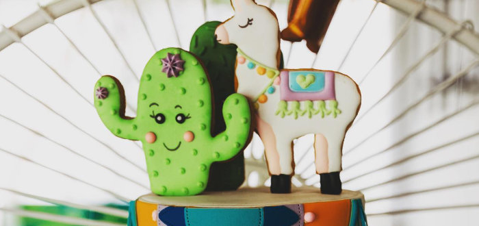 No Llama Drama Birthday Party on Kara's Party Ideas | KarasPartyIdeas.com (1)