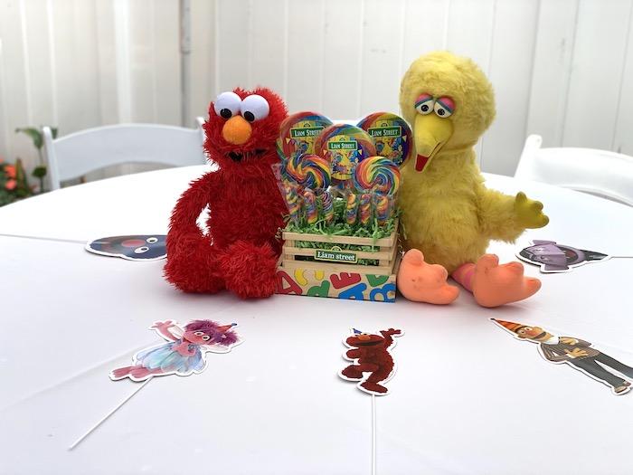 Sesame Street Guest Table from a Sesame Street Birthday Party on Kara's Party Ideas | KarasPartyIdeas.com (16)