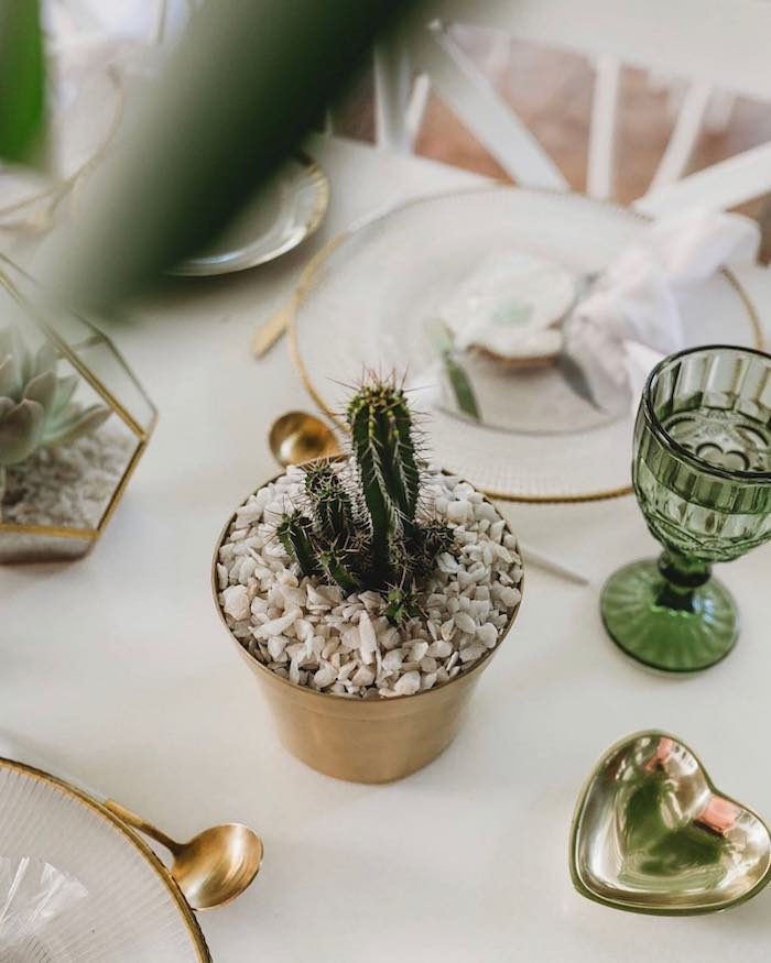 Cacti Centerpiece from a Tropical Baby Shower Brunch on Kara's Party Ideas | KarasPartyIdeas.com (10)