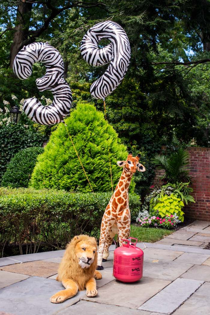 "Balloons & Animals from a ""Twin Exotic"" Tiger King Inspired Birthday Party on Kara's Party Ideas 
