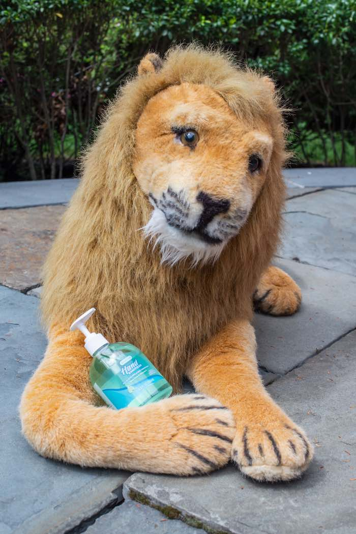"Hand Sanitizer Lion from a ""Twin Exotic"" Tiger King Inspired Birthday Party on Kara's Party Ideas 