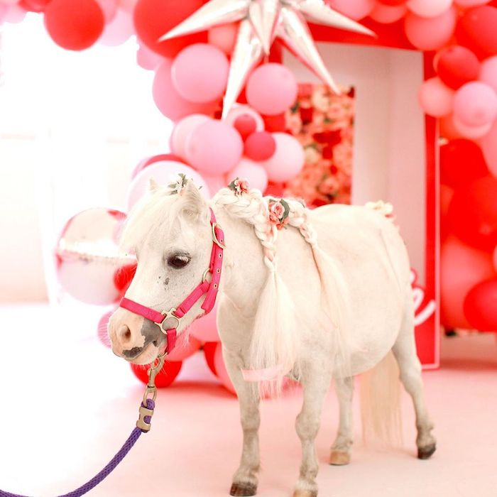 White Pony from a Barbie Ranch Vacation Birthday Party on Kara's Party Ideas | KarasPartyIdeas.com (14)