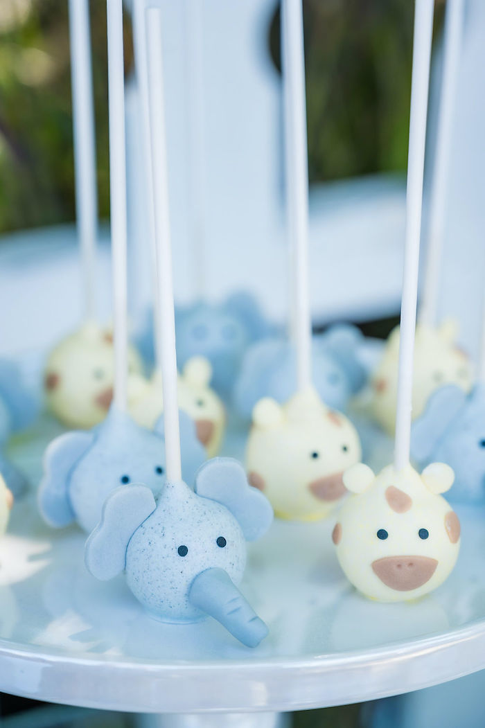 Wild Animal Cake Pops from a Noah's Ark Birthday Drive-by Parade on Kara's Party Ideas | KarasPartyIdeas.com (21)