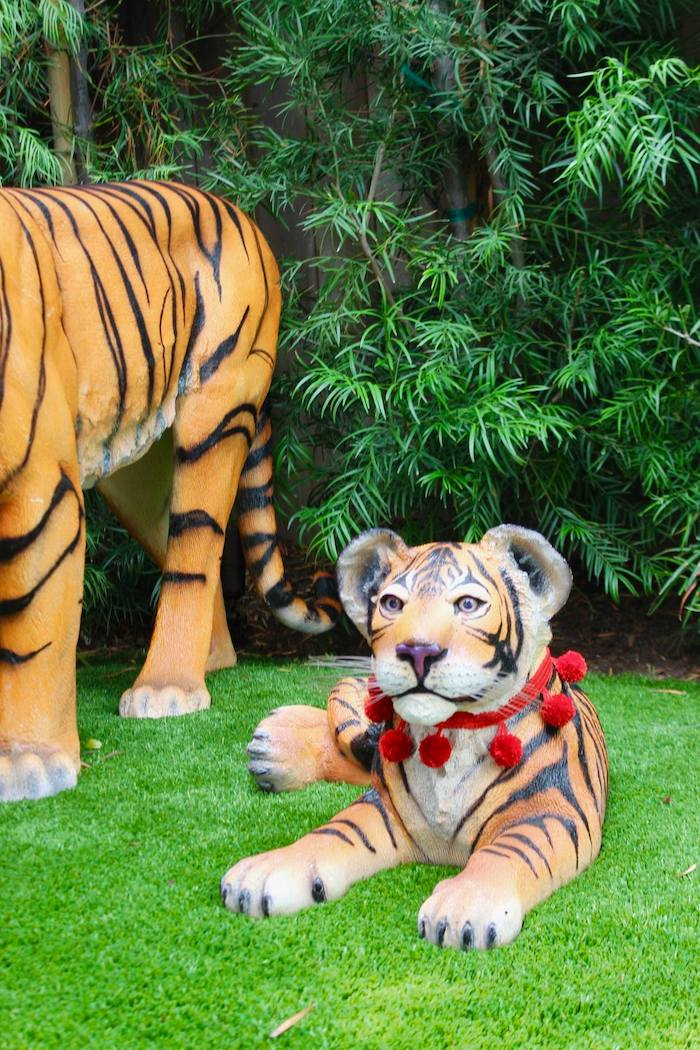Tiger Cub Prop from a Circus Birthday Party on Kara's Party Ideas | KarasPartyIdeas.com (24)