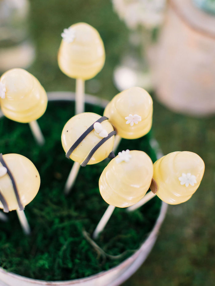 Bee Themed Cake Pops from a Winnie the Pooh Backyard Party on Kara's Party Ideas | KarasPartyIdeas.com (20)