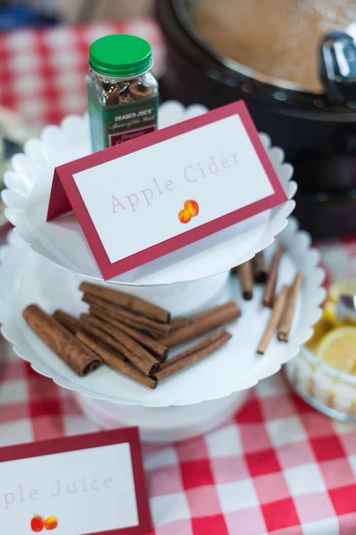 Apple Cider from an Apple Orchard Birthday Party on Kara's Party Ideas | KarasPartyIdeas.com (45)