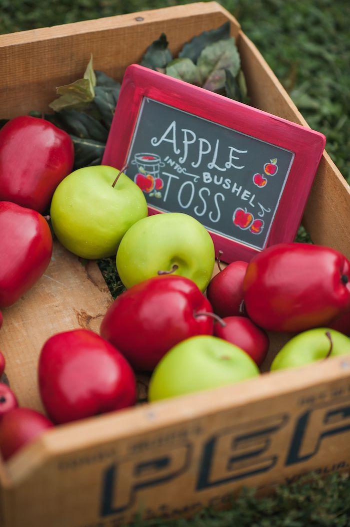 Apple Bushel Toss from an Apple Orchard Birthday Party on Kara's Party Ideas | KarasPartyIdeas.com (61)