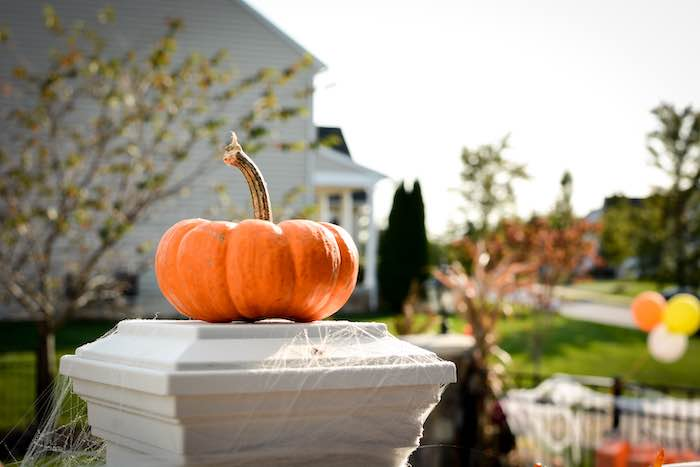 Pumpkin Pedestal from a Backyard Fall Festival Party on Kara's Party Ideas | KarasPartyIdeas.com (20)