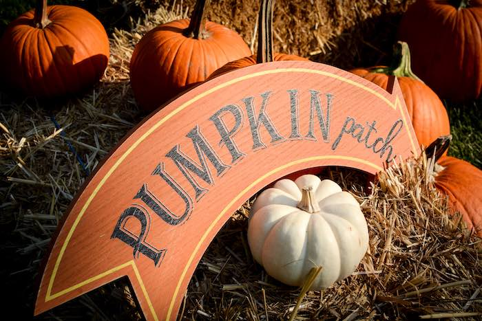 Pumpkin Patch Sign from a Backyard Fall Festival Party on Kara's Party Ideas | KarasPartyIdeas.com (5)