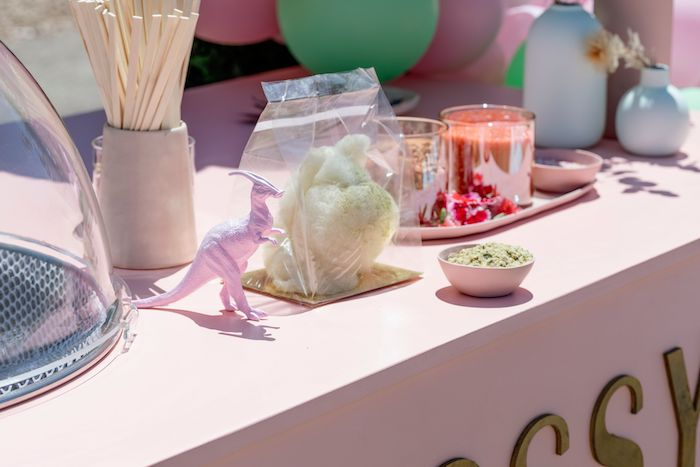 Cotton Candy Cart from a Girly Dino Picnic Party on Kara's Party Ideas | KarasPartyIdeas.com (10)