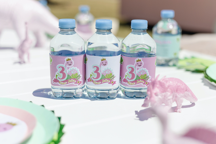 Dino Drink Bottles from a Girly Dino Picnic Party on Kara's Party Ideas | KarasPartyIdeas.com (23)